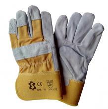 Glove-ORIOLE